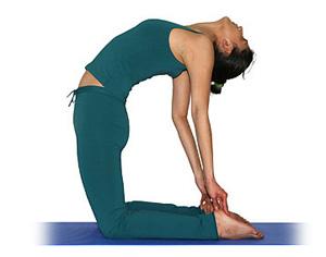 el camello  asanas intermedias  yogaes